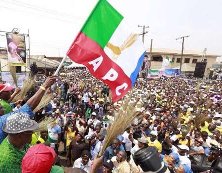 Ogun APC Primaries